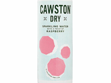 Cawston Press Dry Raspberry (24 x 250ml)