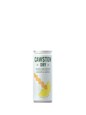 Cawston Press - Sparkling Dry Ginger & Lemon 1001 Trees UK